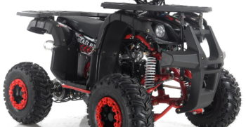 GRIZZLY7 110cc (1)