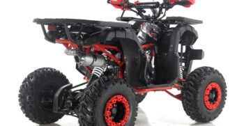 GRIZZLY7 110cc (4)