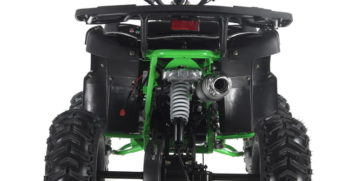 GRIZZLY7 110cc (7)