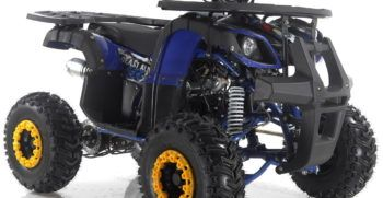 GRIZZLY7 110cc (2)