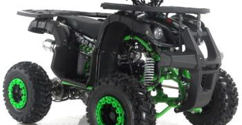 GRIZZLY7 110cc (3)