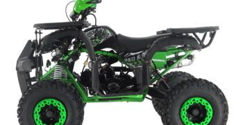 GRIZZLY7 110cc (6)