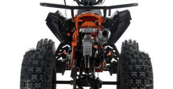 BIGBORE8 125cc (5)